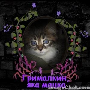 grimalkin-prolet-imagechef