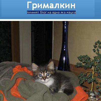 grimalkin-blog-091003-2