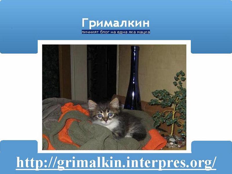 grimalkin-blog
