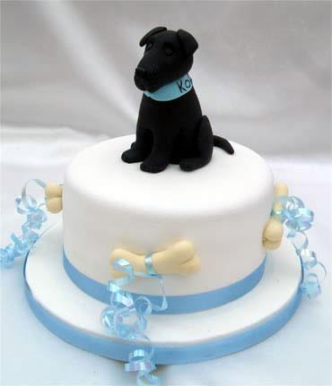 labrador-rojden-den-torta