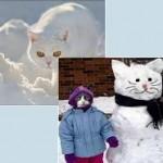 snowcat-snejna-kotka